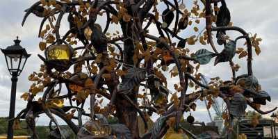 Путешествие в сказочный Раушен. Янтарное дерево Светлогорска