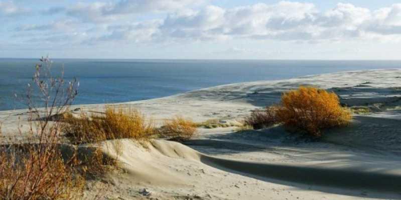 """Экскурсия """"Куршская коса - край рыбаков, дюн и сосновых лесов"""". Куршская коса - дюны, песок, экскурсия"""