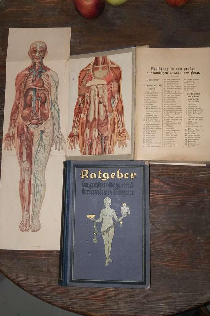 Немецкий медицинский справочник, до 1945 года